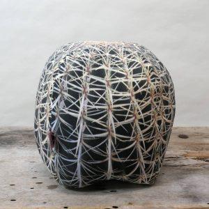 Cactuspillow1