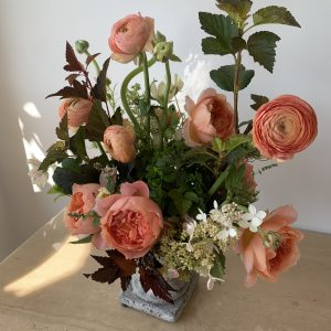 Congratulations Flowers + Gifts